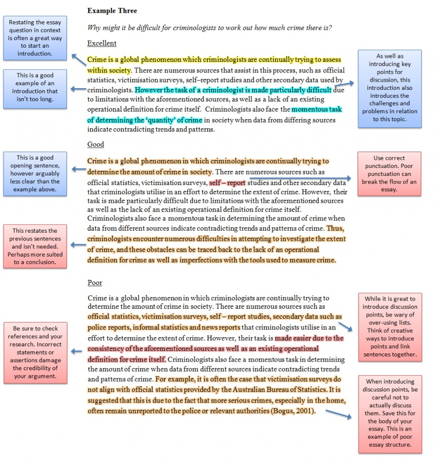 006 Essay Example Intro Together Examples For Unique University Introduction Pdf Argumentative Students