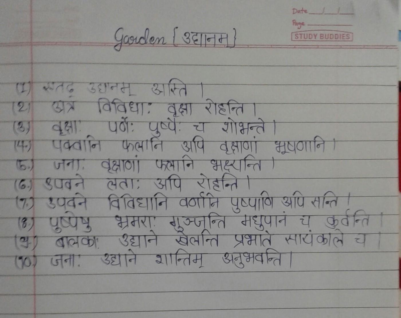 010 Our School Garden Essay Bamboodownunder Com On Gardenssl1