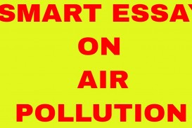 006 Essay Example On Air Pollution For Kids Sensational