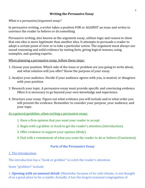 persuasive essay criteria