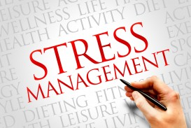 006 Essay Example Sample On Stress Awesome Management