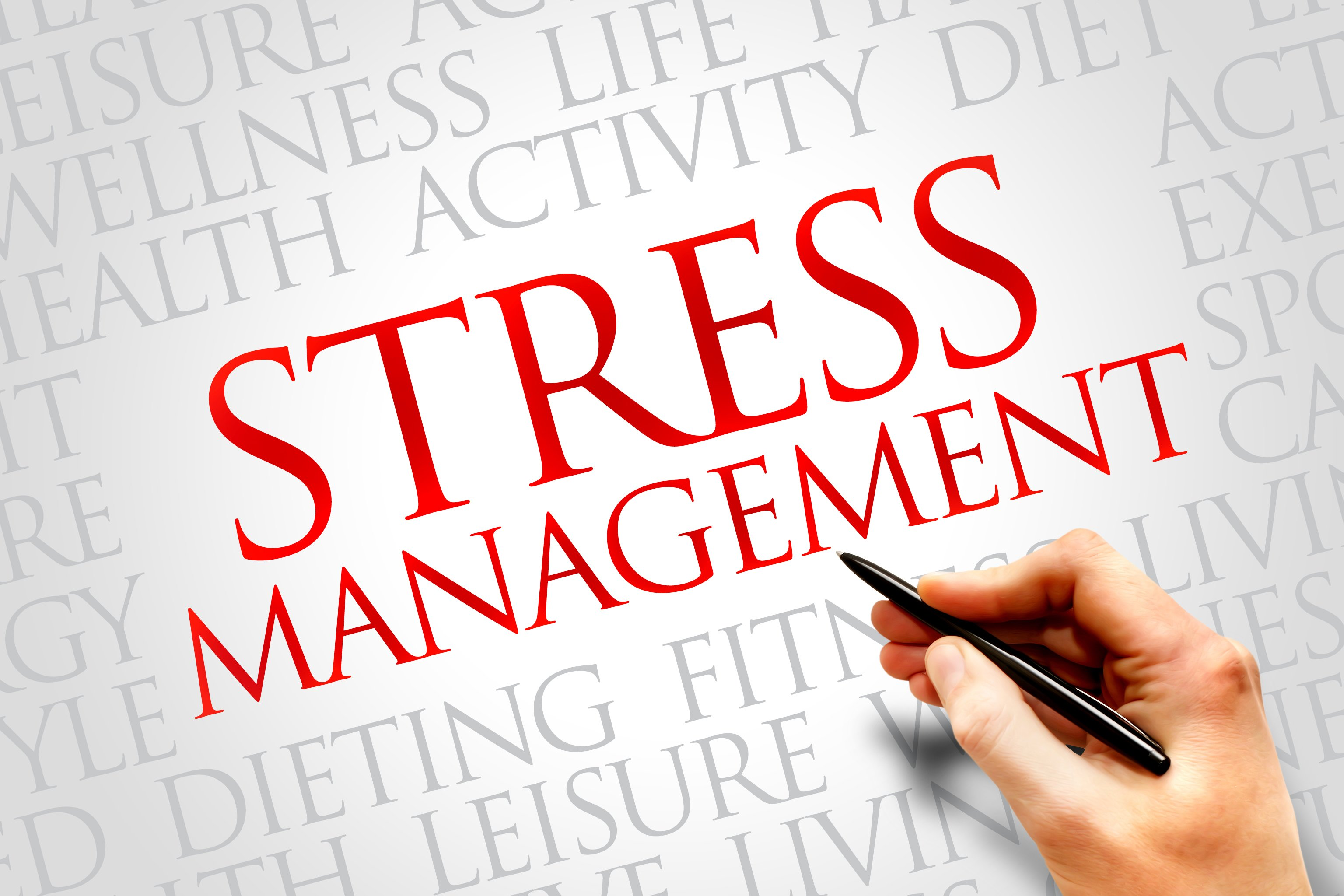 006 Essay Example Sample On Stress Awesome Management Full