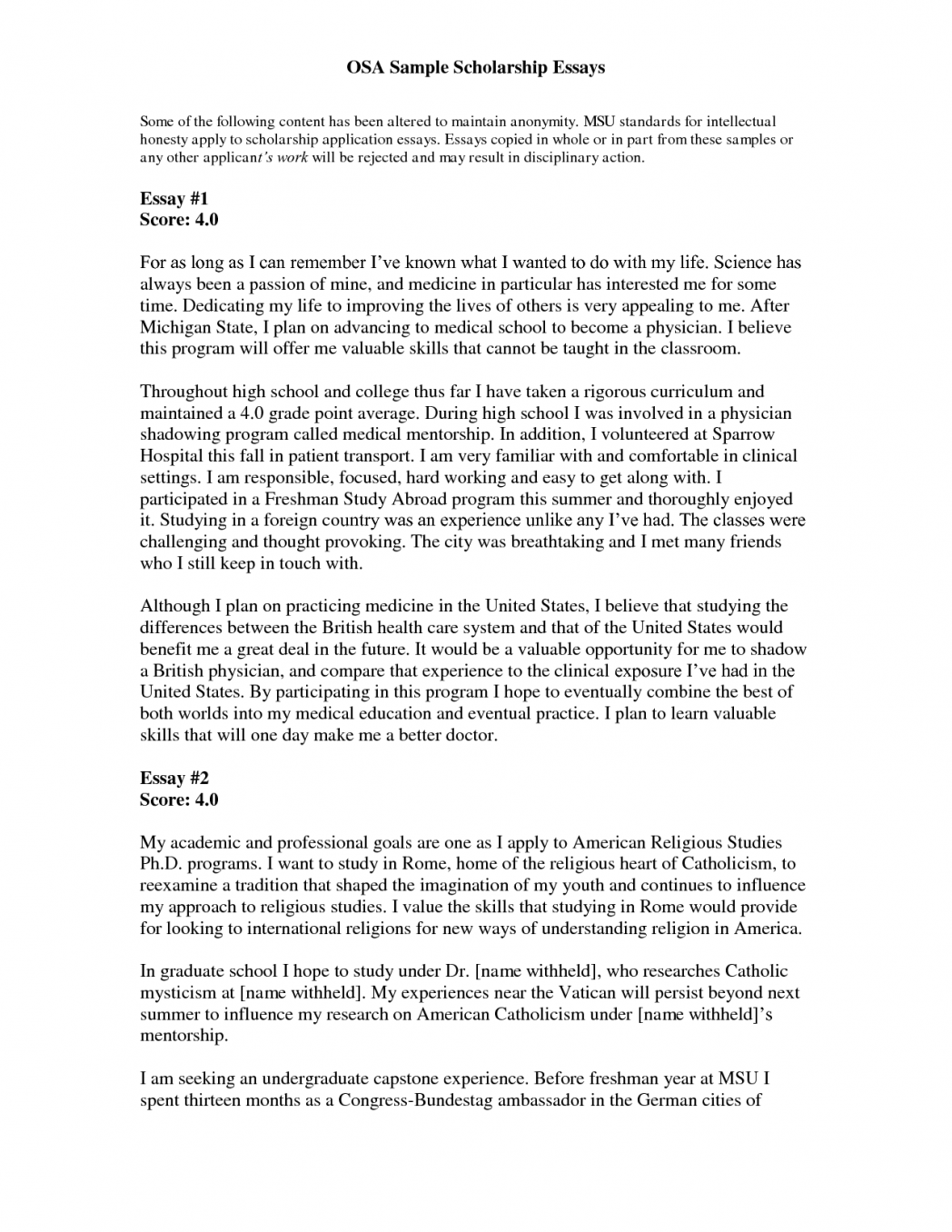 account writing sample for o levels