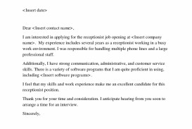 006 Essay Example Social Commentary Simple Cover Letter Help Receptionist Resume Top Ib Analysis Examples Reflective Critical Meta Dreaded Art The Great Gatsby