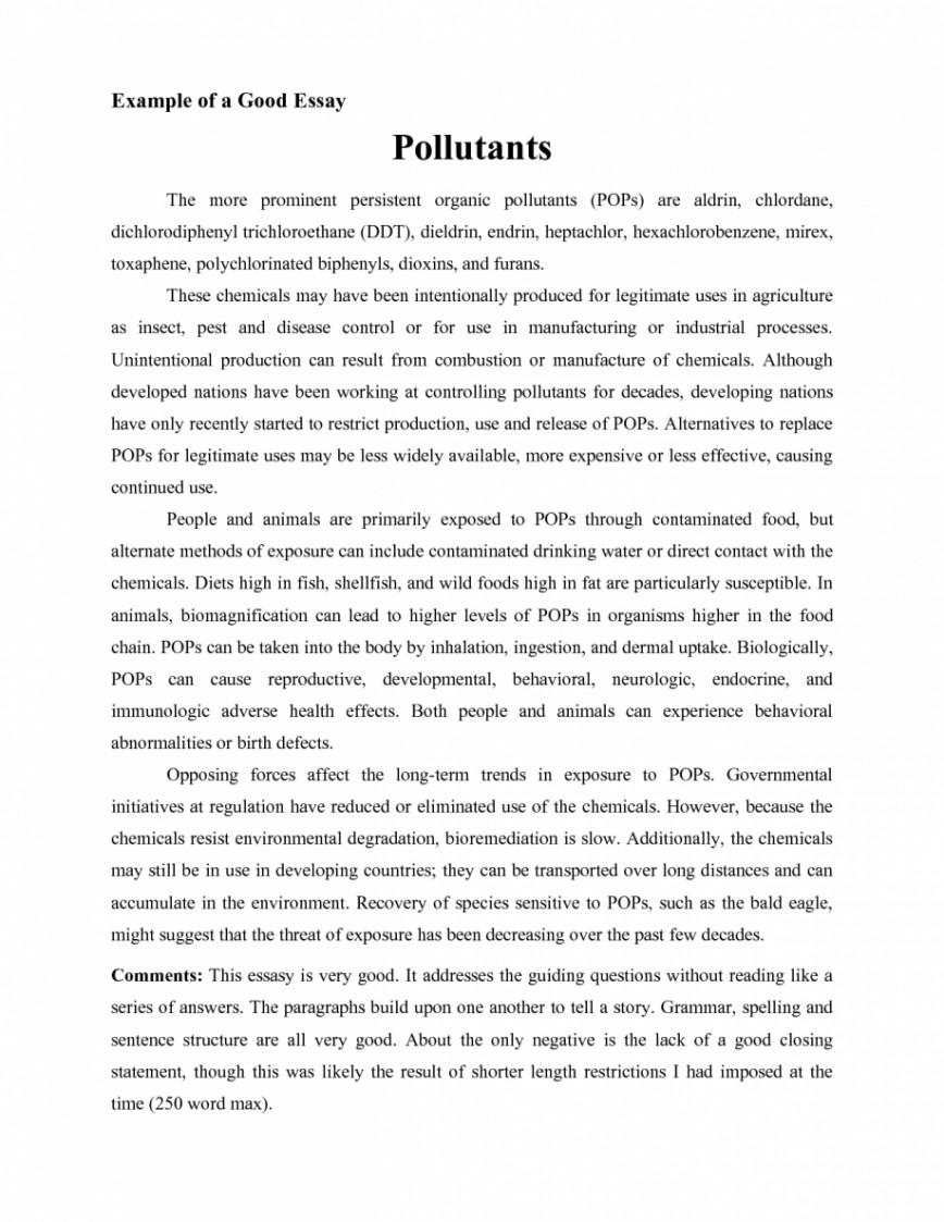 006 Essays Examples Essay Example Good Of College Jianbochencom L Striking Sample For Entrance Exams High School Argumentative Pdf