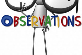 006 Observations Essay Example On Importance Of Social Rare Science