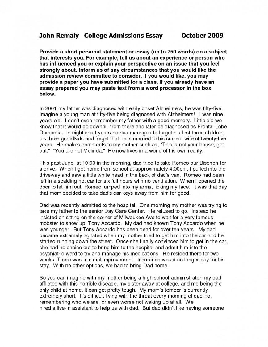 006 Personal Essays Of Short College L Impressive Essay Examples Experience Narrative Example Pdf Graduate School Growth 868