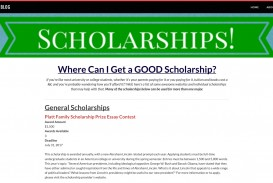 006 Platt Family Scholarship Prize Essay Contest Screen Shot At Am Orig Outstanding