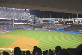 006 Viewmyseatslookforward Essay Example On Phenomenal Stadium A Newly Renovated Cricket Watching Match In Hindi