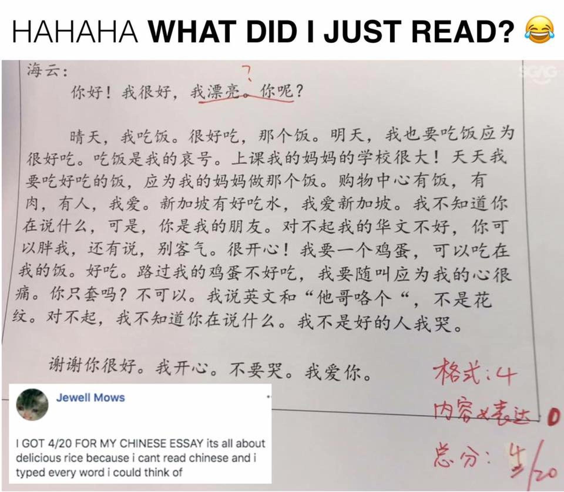 007 449y258ku5921 Essay Example Amazing Chinese Language Writing Letter Format Topics 1920