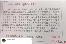 007 449y258ku5921 Essay Example Amazing Chinese Language Writing Letter Format Topics
