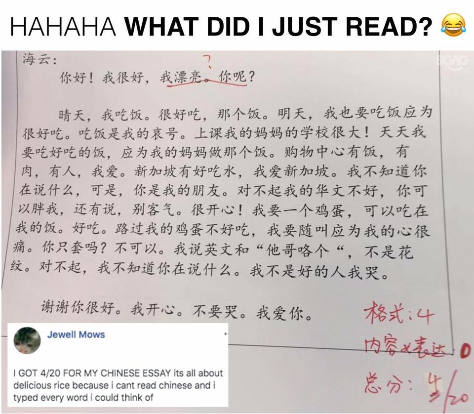 007 449y258ku5921 Essay Example Amazing Chinese Language Writing Letter Format Topics Full