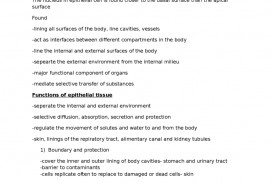 007 Body Image Essay Example Fantastic Outline Argumentative Topics Conclusion 320
