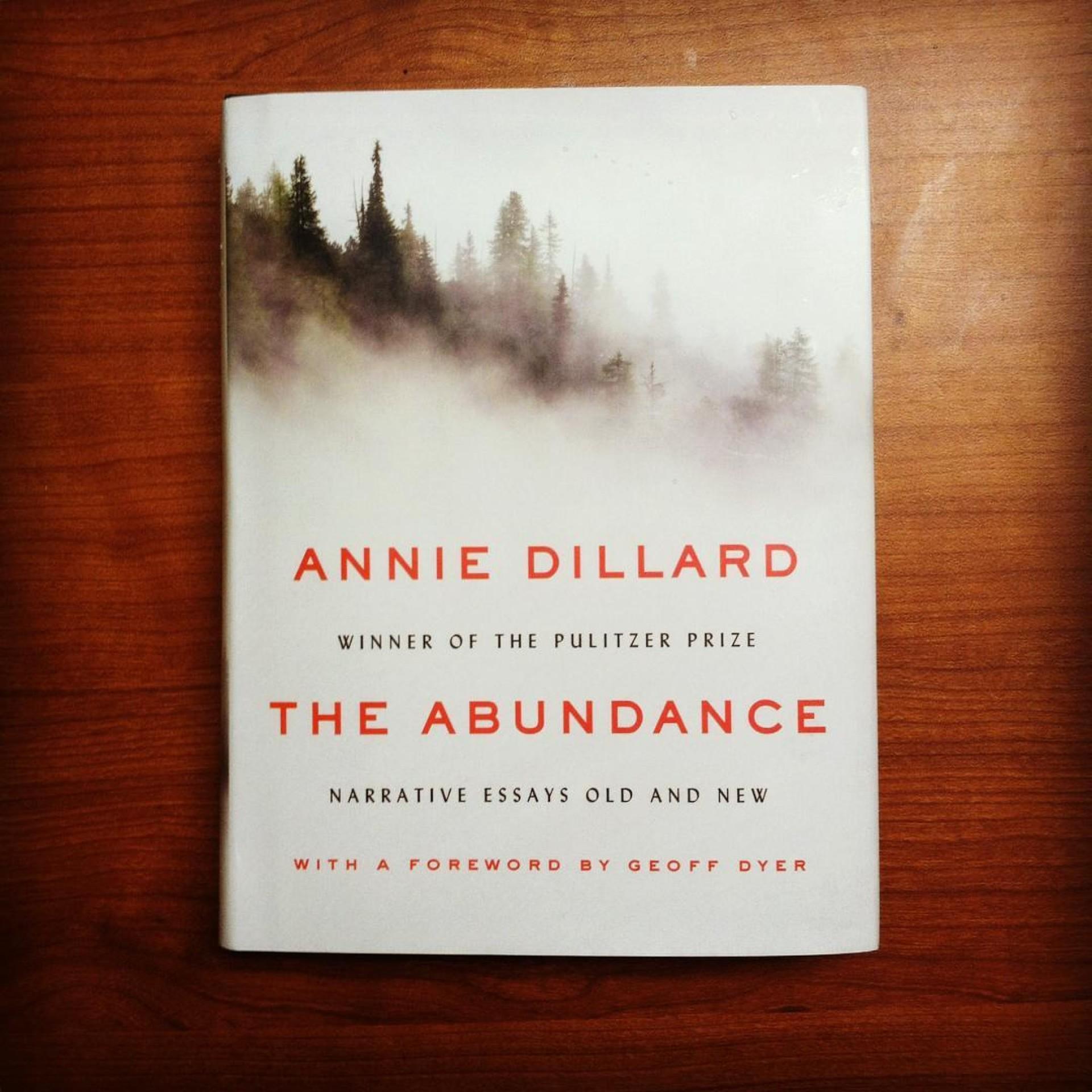 007 Essay Example Annie Dillard Essays 12841172 10154021501742277 2773462023536637215 O Stirring Stunt Pilot Pdf An American Childhood 1920