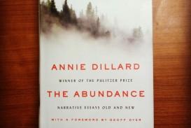 007 Essay Example Annie Dillard Essays 12841172 10154021501742277 2773462023536637215 O Stirring Stunt Pilot Pdf An American Childhood