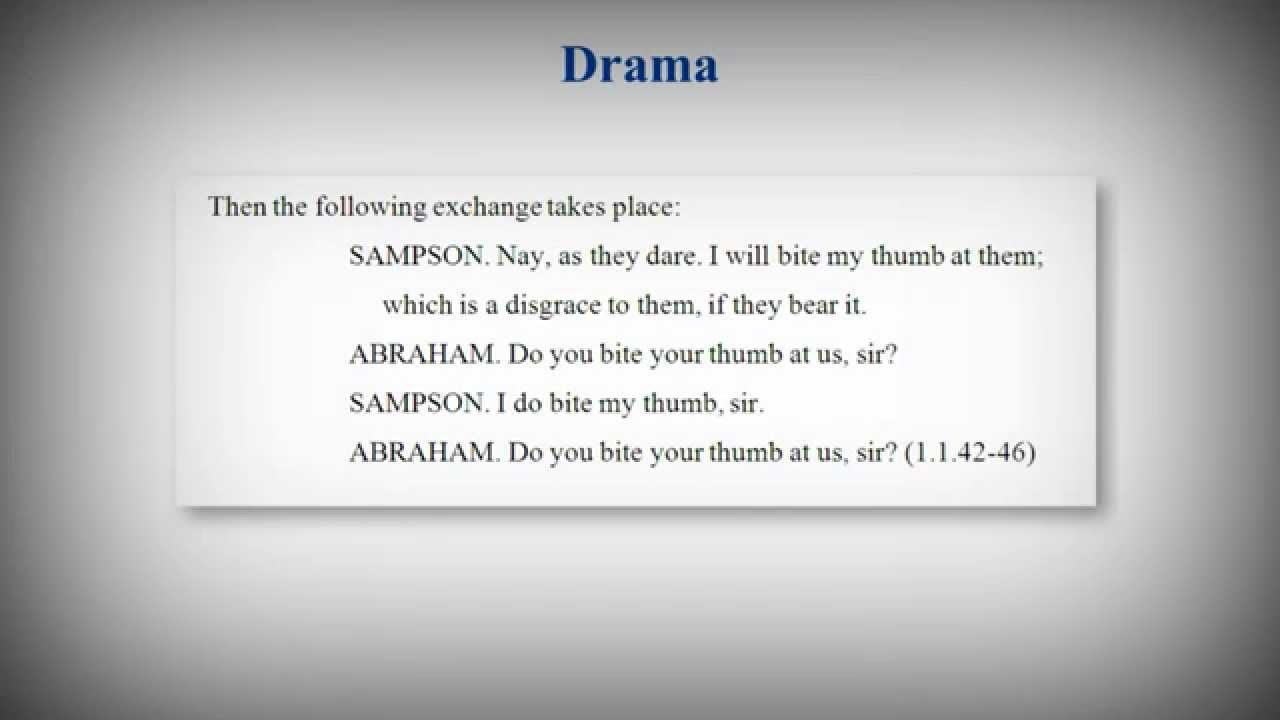 007 Essay Example How To Quote Poem In An Best A Title Apa Full