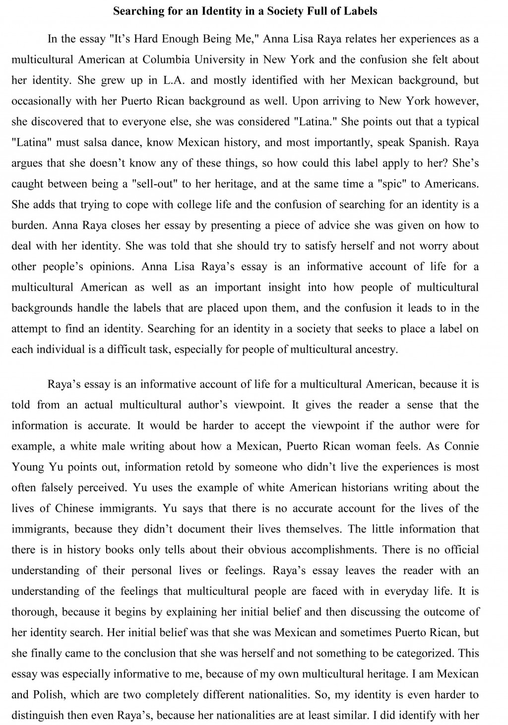 007 Essay Example Immigrants Problems Synthesis Excellent Face Immigrant Issues Large