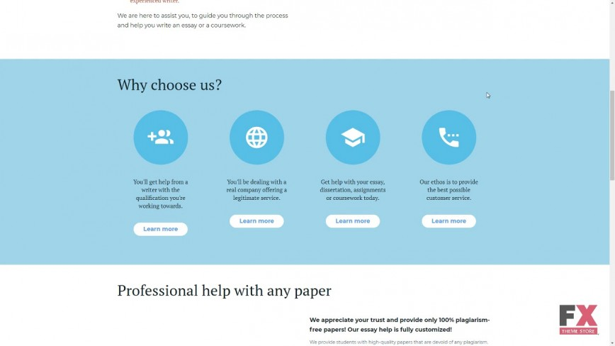 007 Essay Example Writing Website Amazing Script Template