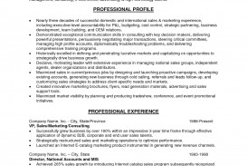 007 Future Career Goals Essays Free20sales20resume20objective20examples Stirring Essay Examples Pdf
