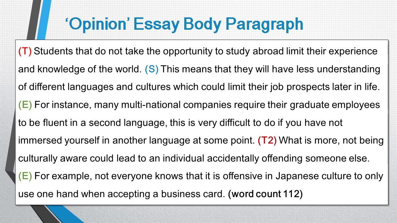 Essay body paragraph structure