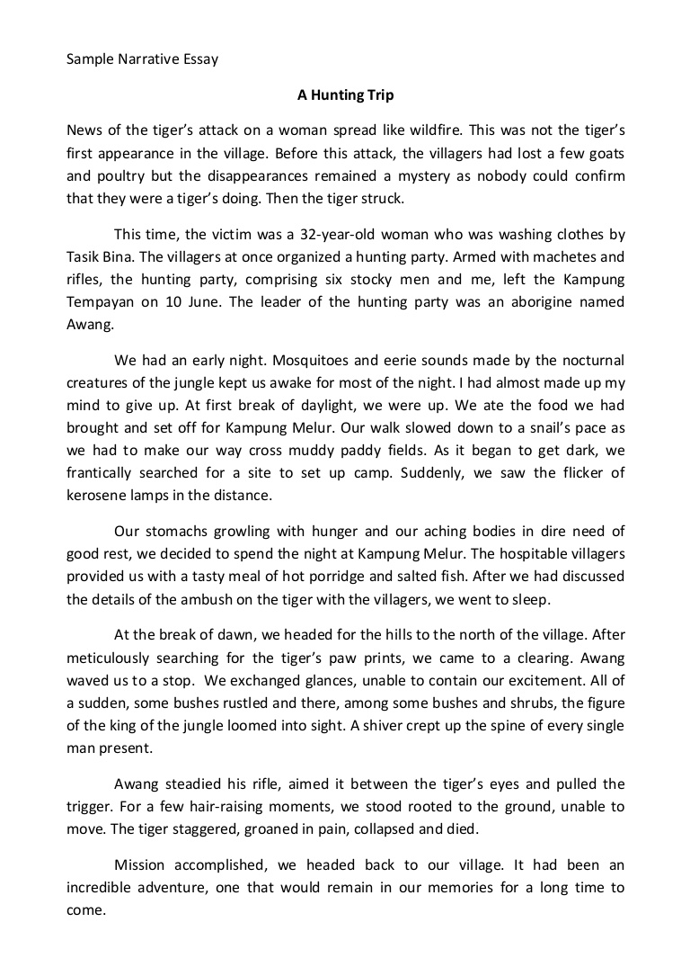007 Narration Essay Samplenarrativeessay Phpapp02 Thumbnail Unbelievable Narrative Format College Outline Pdf Full