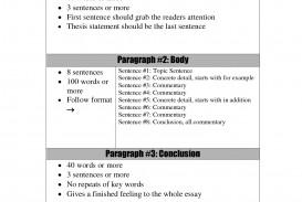 007 Paragraph Essay Example Three Top 3 Writing Narrative Sample 320