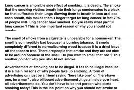 007 Quit Smoking Essay Example Img 4330 Fascinating