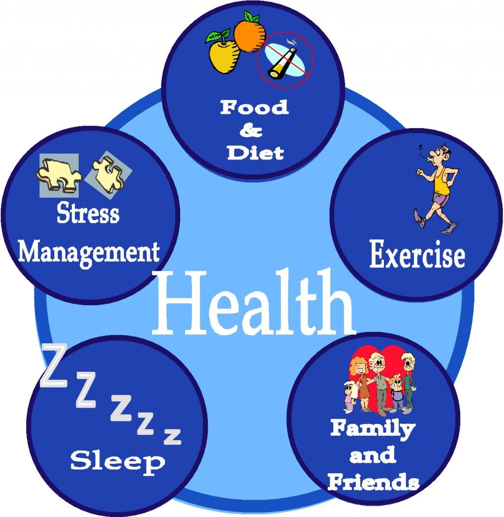 008 5heucfh Essay On Sleep And Good Health Fascinating Large