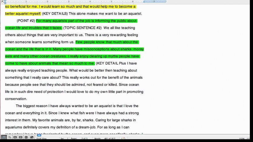 External environment essays