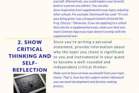 008 Common App Brainstormprompt Essay Example Unusual Prompt 1 Examples 3 4