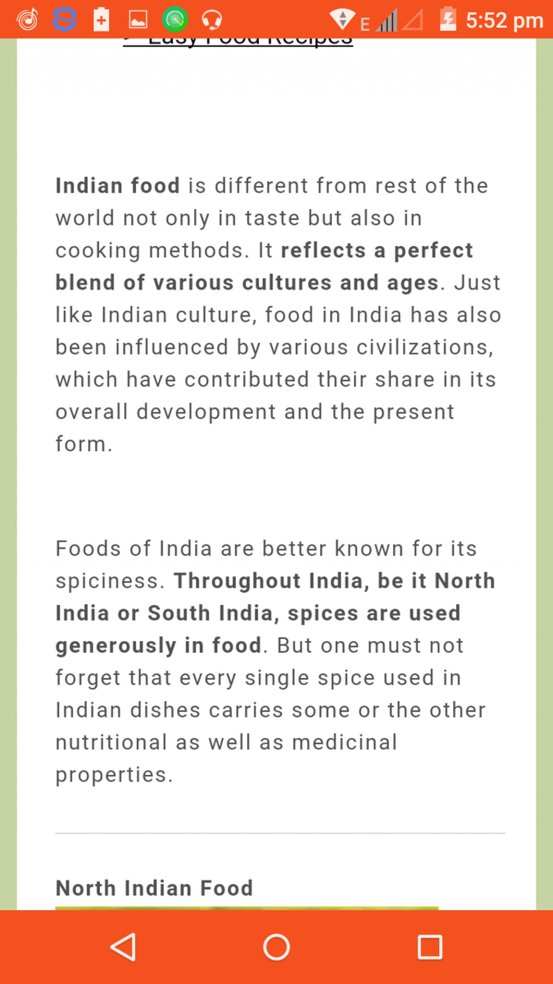 essay about indian food