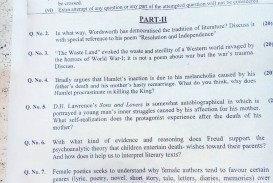 008 Essay Example English Literature Hamlet Outstanding Delay Why Did Revenge