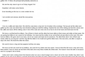 008 Essay Example First Day Of School My In Secondary Marvelous High Titles For Hindi Class 4