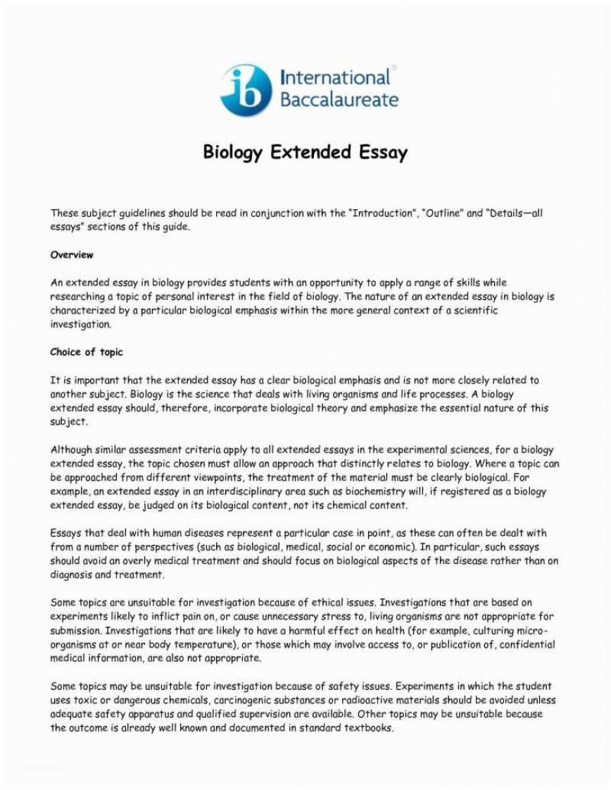 Essay how to write body