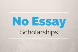 008 Essay Example No Scholarships Singular 2016