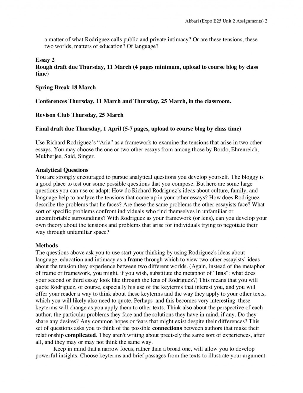 008 Essay Example Spring Stupendous Break Plans Alternative Outline Large