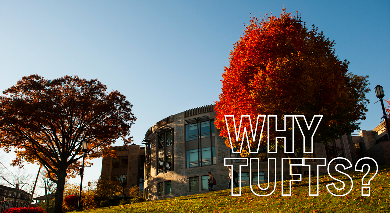 008 Essay Example Why Tufts Video Cover Supplemental Top Essays Samples That Worked Full