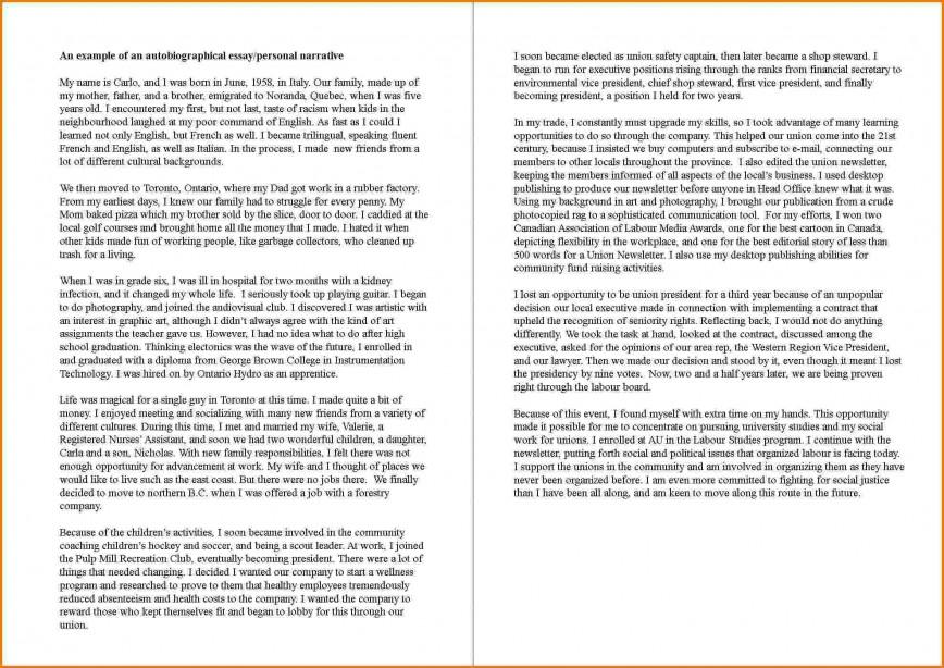 autobiographical essay sample for 8th grade