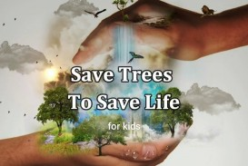 008 How Can We Save Trees Essay Example Marvelous To In Hindi Telugu