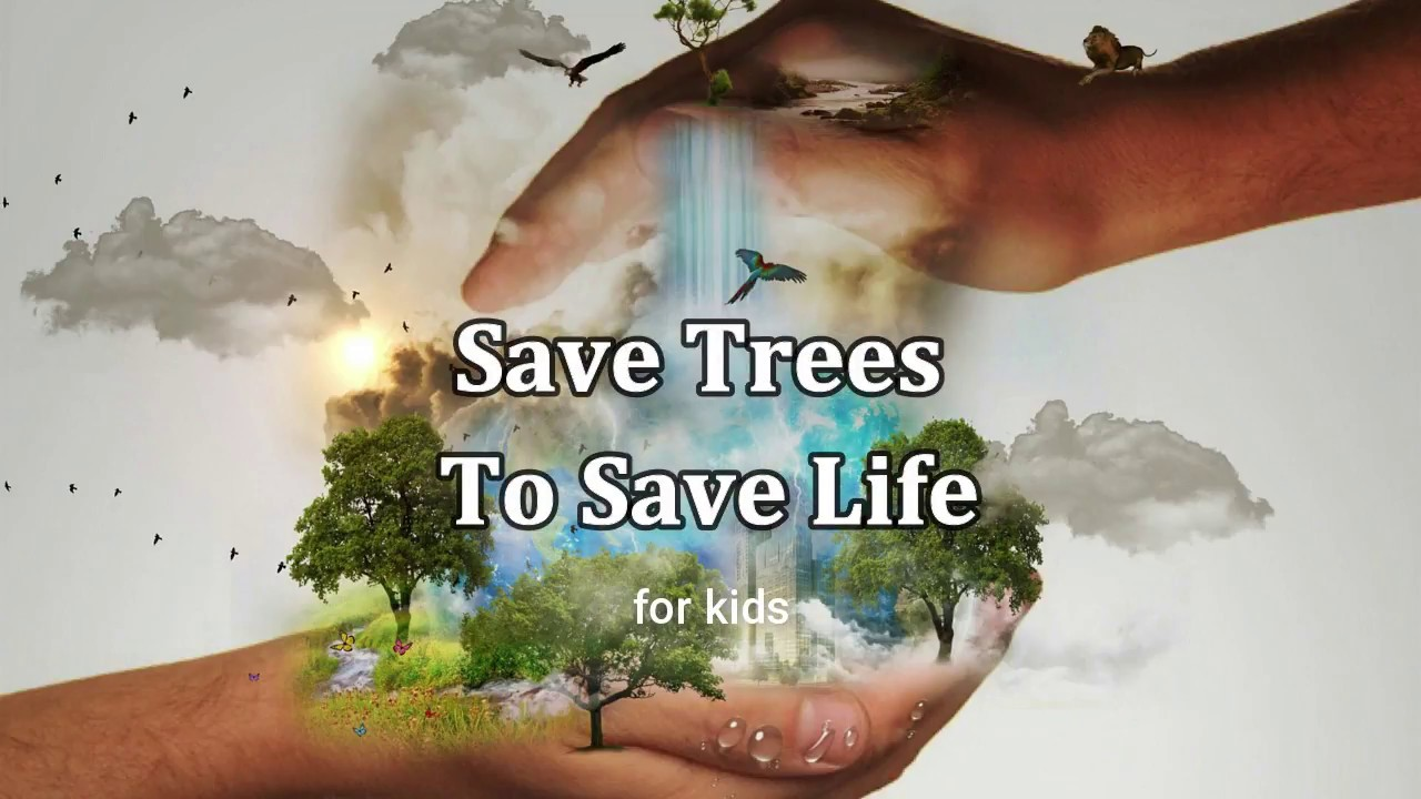 008 How Can We Save Trees Essay Example Marvelous To In Hindi Telugu Full