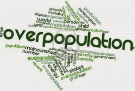 008 Over Population Cause And Effect Of Overpopulation Essay Remarkable