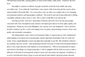 008 Professional Argumentative Essay Writing Service For School Example Free Impressive Essays