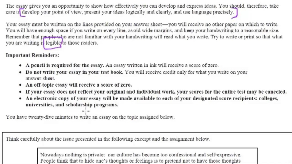 008 Sat Essay Example Rare New Tips Pdf Time Examples Large