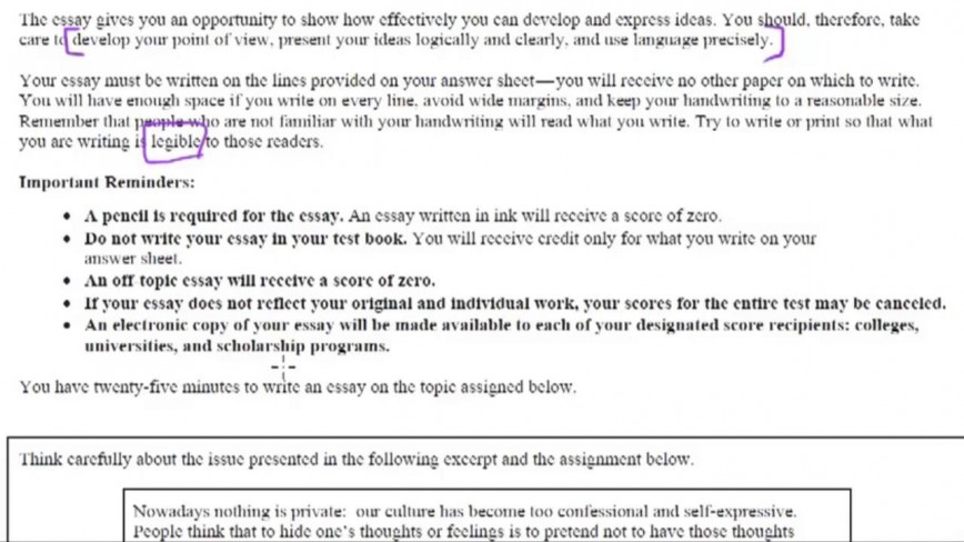 008 Sat Essay Example Rare New Tips Pdf Time Examples 868