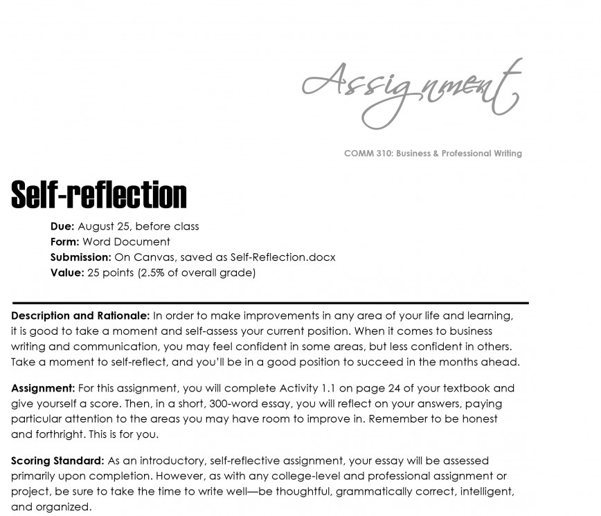 008 Self Reflection Essay Example Reflective On Writing Surprising Sample Examples For Students Gcu