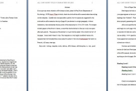 009 Apa Format Essay Template Example Paper Stupendous Papers Examples Word 2010