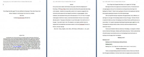 009 Apa Format Essay Template Example Paper Stupendous Short Sample Title Page 6th Edition 480