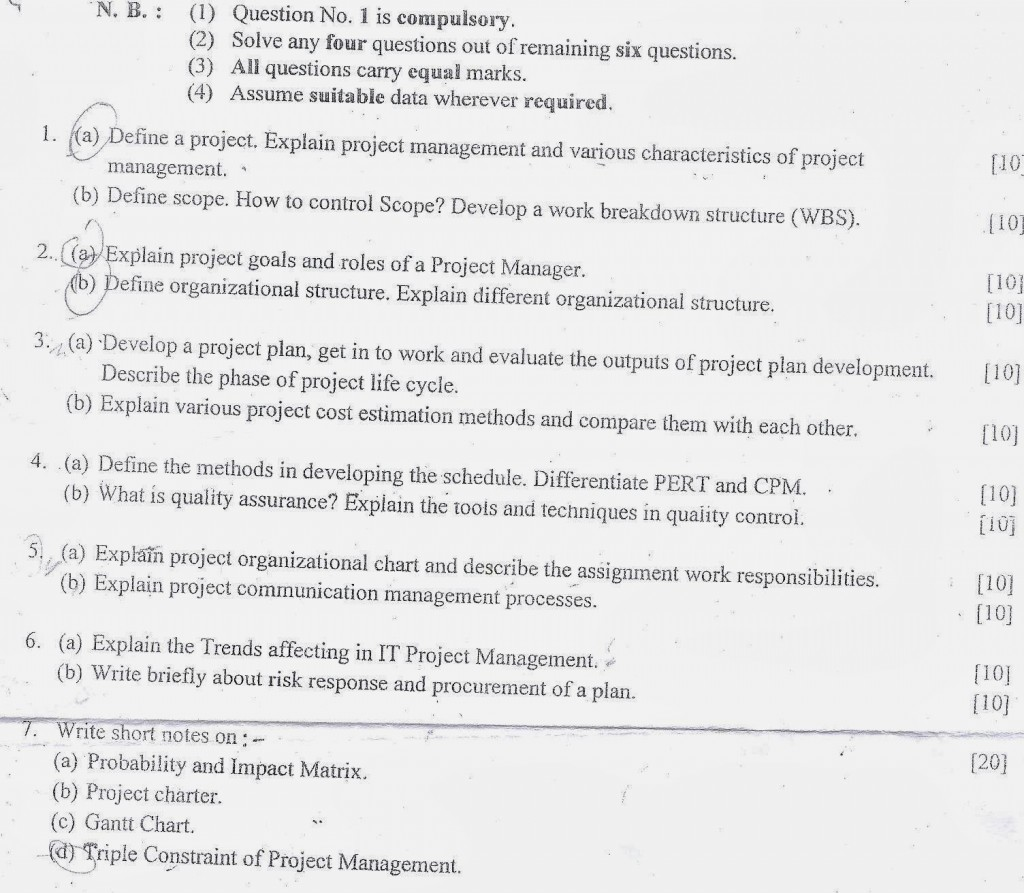 009 Cornell Essay Pmpaper1 Stupendous Mba Examples Engineering Essays That Worked Large
