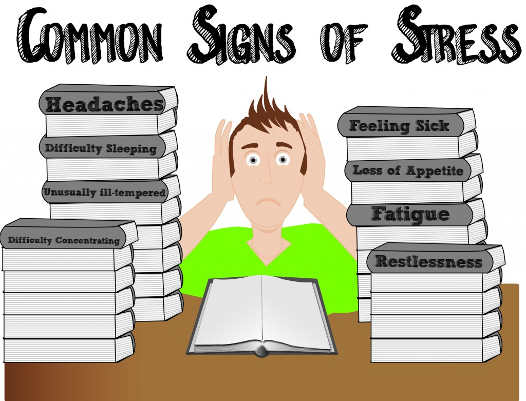 009 Effect Of Stress On Students Essay Example Exceptional Effects Among College Cause And Large