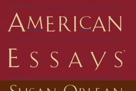 009 Essay Example 61eba7rjfxl The Best American Wonderful Essays Of Century Table Contents 2013 Pdf Download